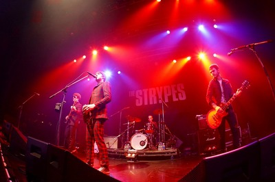 TheStrypes2.jpg
