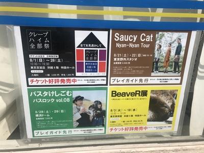 saucycat_2.jpg